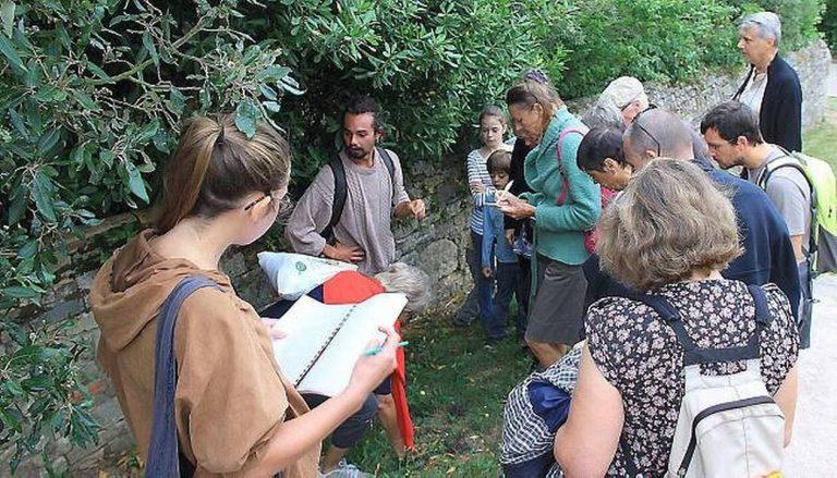 Kevin Yvars ethnobotaniste Association Bota sapiens - Sorties et stages botaniques autour des plantes sauvages